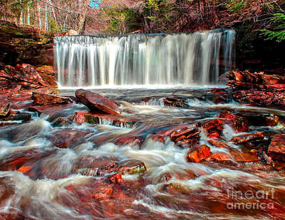 Photograph - Overflowing Falls by Nick Zelinsky