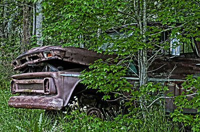 Old Cars Photograph - Overgrown Chevy by Andy Crawford