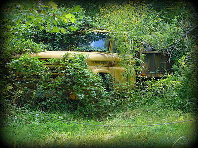 Photograph - Overgrown by Lew Davis