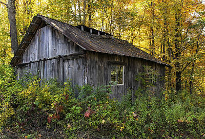 Photograph - Overgrown New England Sugar Shack by John Vose
