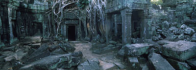 Ancient Civilization Photograph - Overgrown Tree Roots On Ruins by Panoramic Images