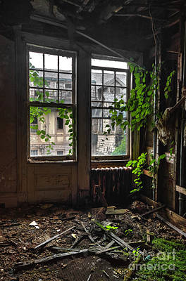 Photograph - Overgrowth by Rick Kuperberg Sr