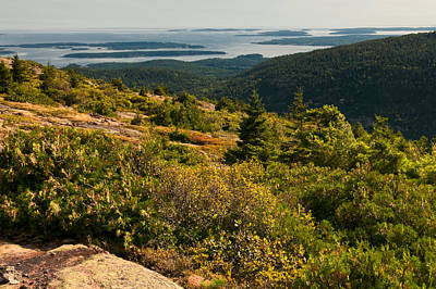 Photograph - Overlooking Frenchman's Bay by Paul Mangold