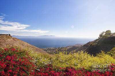 Overlooking Palos Verdes Estates Art Print