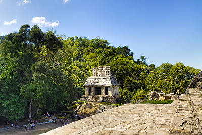 Photograph - Overlooking The Temple Of The Sun At Palenque by Mark E Tisdale