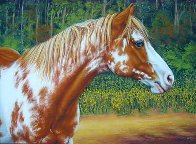 Overo Paint Horse-colorful Warrior Art Print by Margaret Stockdale