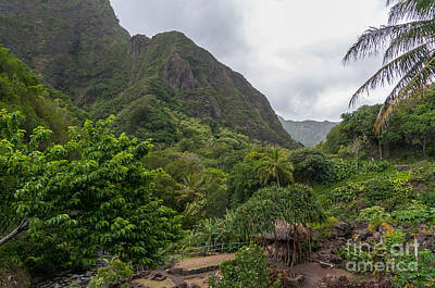 Photograph - Overview Of The Iao Needle State Park Maui by Don Landwehrle