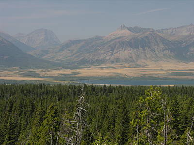 Photograph - Overview Of Waterton Lakes National Park by Robert Lozen