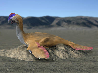 Bird On The Ground Photograph - Oviraptor Philoceratops Sitting On Nest by Nobumichi Tamura
