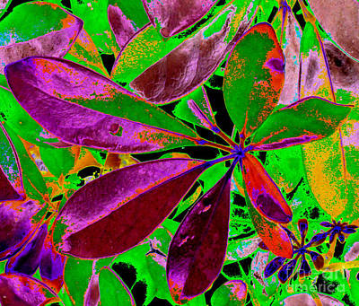 Photograph - Energy Of Colors. Abstract Art. Magenta And Green Leaves  by Oksana Semenchenko