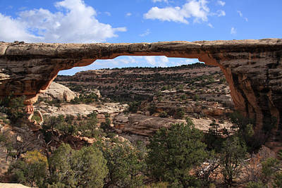 Photograph - Owachomo Bridge - Utah by Aidan Moran