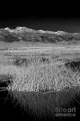 Photograph - Owens Lake And The High Sierra by Jim West