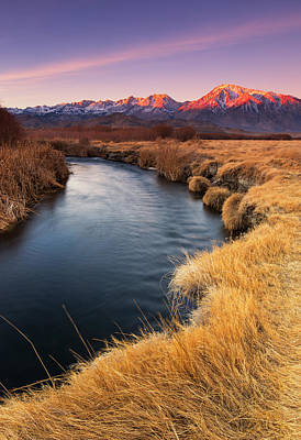 Photograph - Owens River by Tassanee Angiolillo