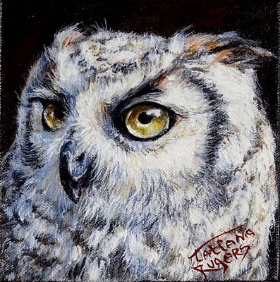 Ruger Painting - Owl 3 by Rugers Tatiana