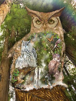 Owl Art Print by Alixandra Mullins