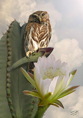 Digital Art - Owl And Peruvian Apple Cactus by Spadecaller