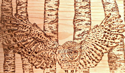 Pyrography Pyrography - owl by Art  Pyrography