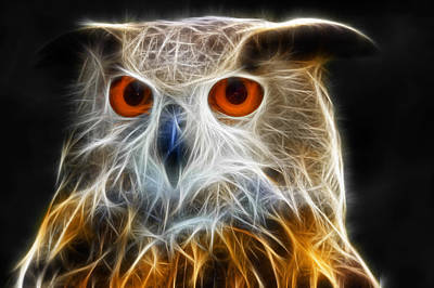 Owl Fractal Art Print by Matthias Hauser