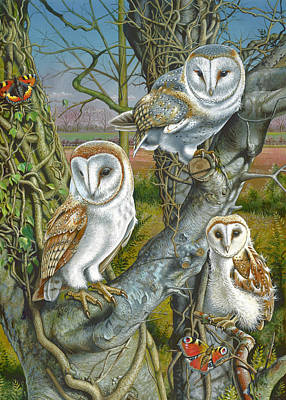 Owl Gathering Art Print by Mark Gregory