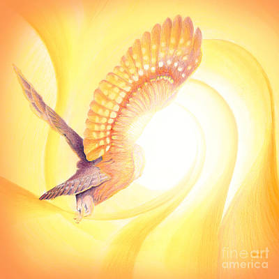 Owl Going Into The Light Art Print