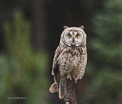 Art Print featuring the photograph Owl In The Forest Visits by Tom Janca