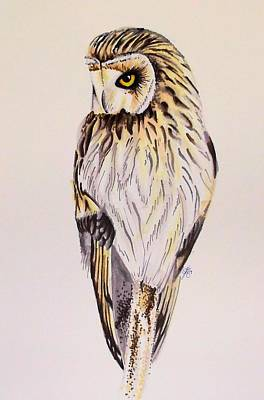 Drawing - Owl In Winter by Scarlett Royal