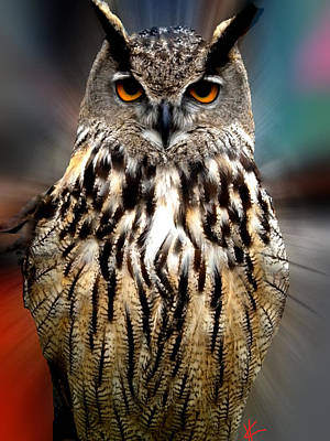 Owl Living In The Spanish Mountains Art Print