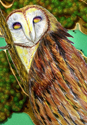 Drawing - Owl Mixed Media by Barbara Giordano