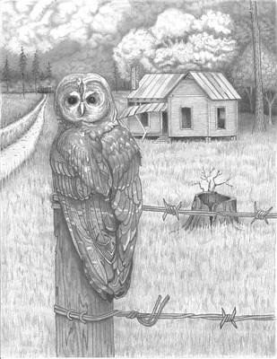 Old Barn Drawing - Owl On A Post by David Gallagher