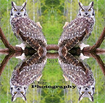 Photograph - Owl Reflections... by Al Fritz