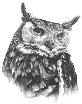Painting - Owl Study by Marisa Salazar