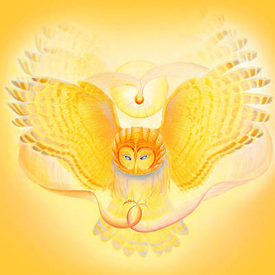 Animals Drawings - Owl Touching the Medicine Song by Robin Aisha Landsong