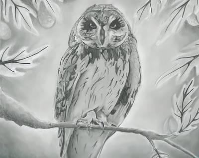 Owl2 Original by Raquel Ventura