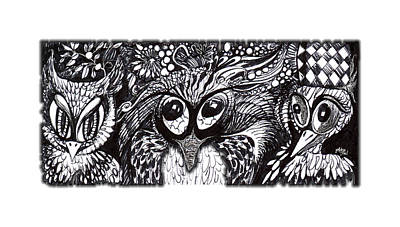Drawing - Owls Eyes by Adria Trail
