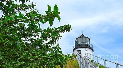 Photograph - Owl's Head Light by Nancy Patterson