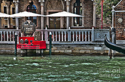 Photograph - Owls On The Grand Canal by Brenda Kean