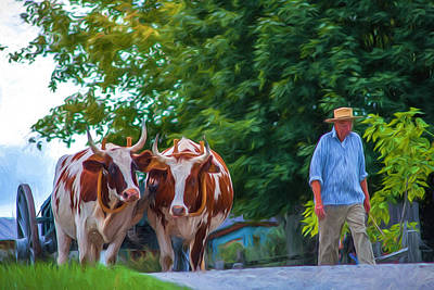 Photograph - Ox Cart And Farmer by Chris Bordeleau