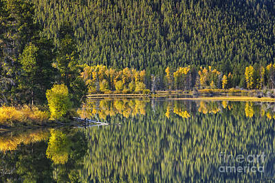 Teton Photograph - Oxbow Abstract by Mark Kiver