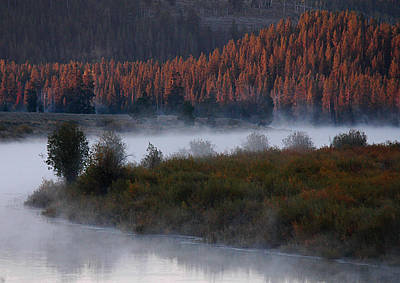 Photograph - Oxbow Bend by Michael Kirk