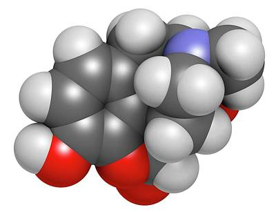 Oxymorphone Opioid Analgesic Drug Art Print