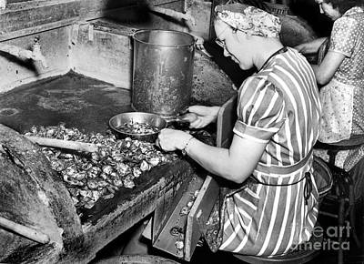 Photograph - Oyster Industry Shuckers 1948 by Merle Junk