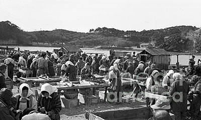 Photograph - Oystering In Japan by Unknown