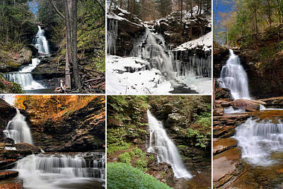 Photograph - Ozone Falls In Every Season by Gene Walls