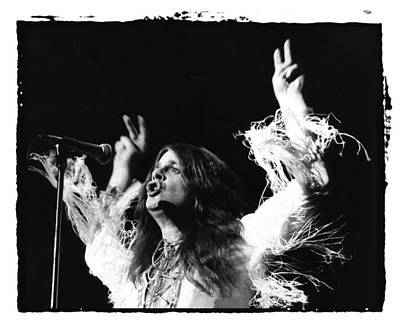 Photograph - Ozzy by Sue Arber