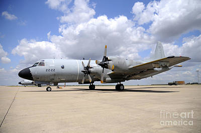 P-3m Orion Of The Spanish Air Force Art Print by Riccardo Niccoli