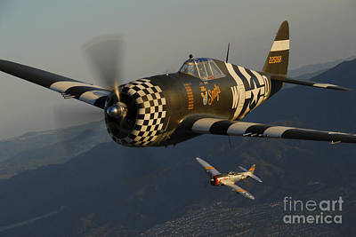 P-47 Thunderbolts Flying Over Chino Print by Phil Wallick