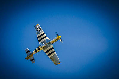 Photograph - P-51 Invasion Stripes by Bradley Clay