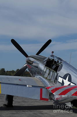 Ww11 Aircraft Photograph - P-51 Mustang by Randy Jackson