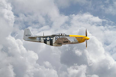 P51 Mustang Gallery - No5 Art Print by Pat Speirs
