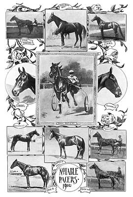 Sulkies Photograph - Pacer Racehorses, 1902 by Granger